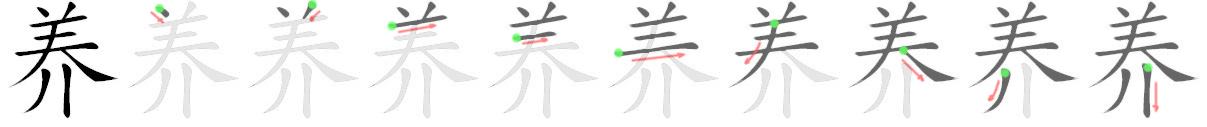 stroke order for 养